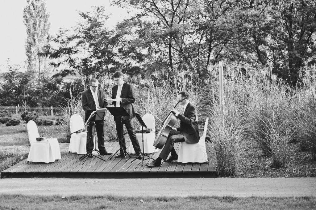 Kwartet Nova
